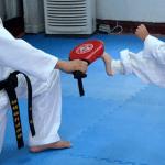 kung fu hose